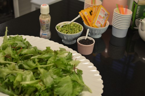 A green salad was served with Japanese sesame dressing and some extra black sesame seeds and wasabi peas to sprinkle on