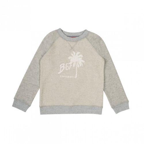 sweat-imprime-span-gris-chine-clair-span-192-1_3